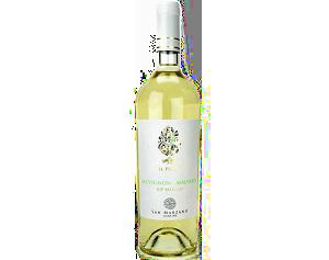 IL Pumo Sauvignon Blanc Malvasia 2016