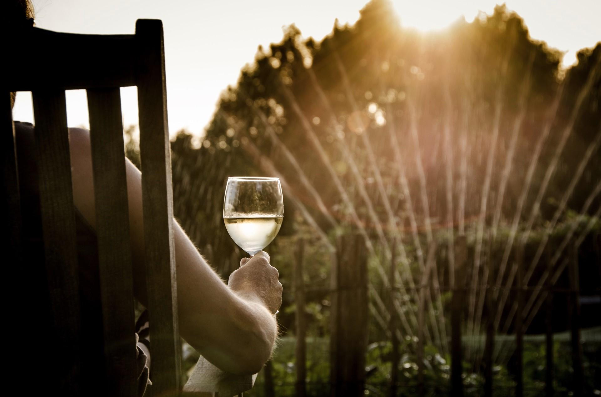 Sobre vinho
